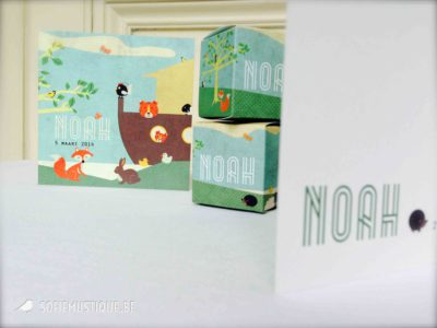 Geboortekaartje Noah diertjes