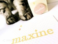 Geboortekaartje Maxine, ruitjes, pastelkleuren, pastels, patroon, eenvoudig, modern